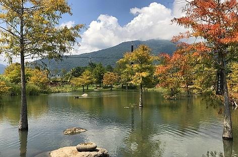 花蓮租車市集私房景點-松湖驛站